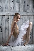 foto of ballerina  - Studio shot - JPG