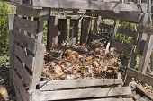 image of recycle bin  - A rickety home made compost bin outside made of recycled wood and filled with different levels of compost in various stages of decomposition - JPG