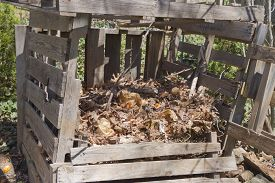 stock photo of decomposition  - A rickety home made compost bin outside made of recycled wood and filled with different levels of compost in various stages of decomposition - JPG