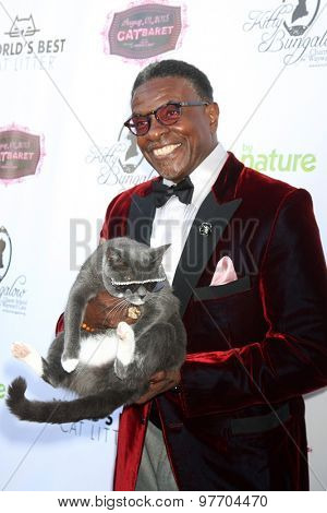 LOS ANGELES - AUG 1:  Keith David at the A CATbaret! - A Celebrity Musical Celebration of the Alluring Feline at the Avalon on August 1, 2015 in Los Angeles, CA
