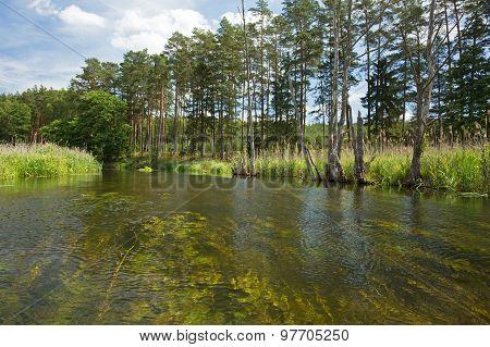 Poland.brda River In Summer.horizontal View