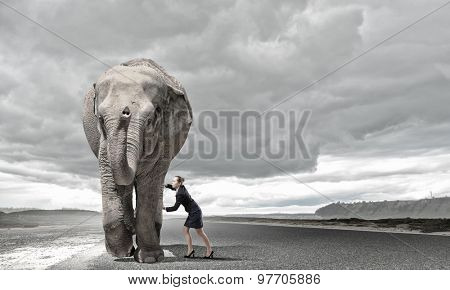 Businesswoman making effort to move huge elephant
