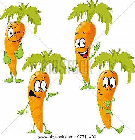 Carrot - Funny Vector Cartoon