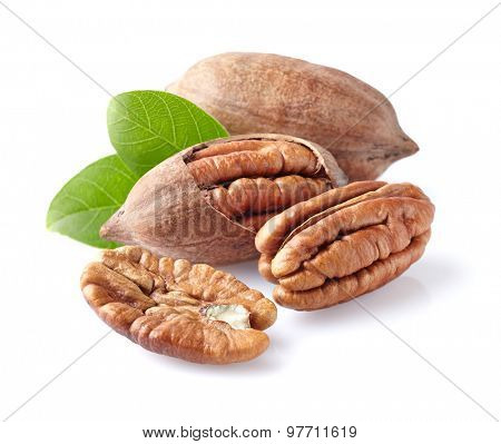 Pecans with leaf