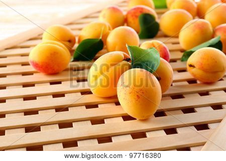 Ripe apricots on wooden lattice background