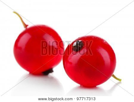 Fresh red currants isolated on white