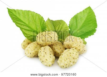 Fresh mulberry with green leaves isolated on white