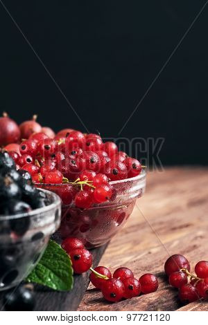 Wet Fresh Red Currants