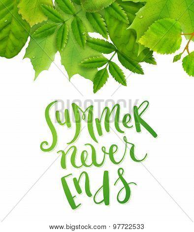 Summer never ends
