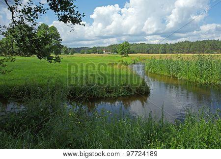 Poland.chocina River In Summer.horizontal View