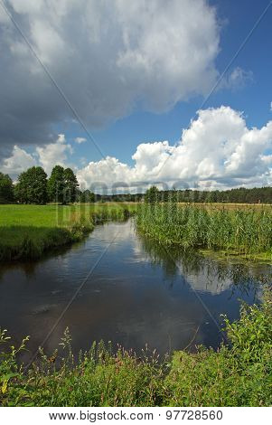 Poland.chocina River In Summer.vertical View