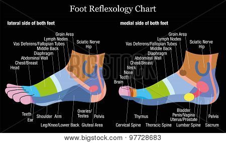 Foot Reflexology Profile Side View Black