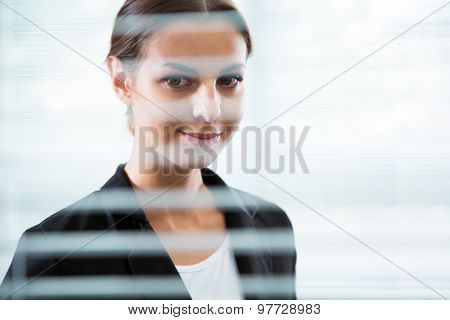 Beautiful businesswoman's portrait. View through blinds