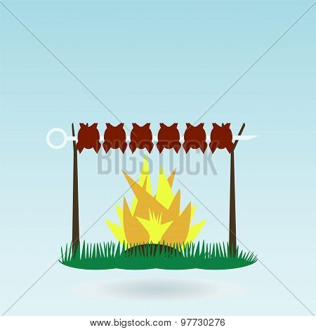 Shish Kebab On Skewers. Fire. Grass Concept.