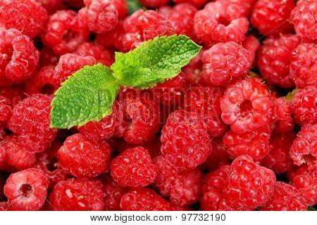 Sweet raspberries background