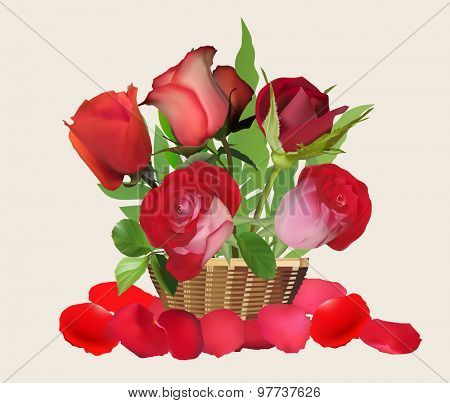 illustration with red roses in basket isolated on light background