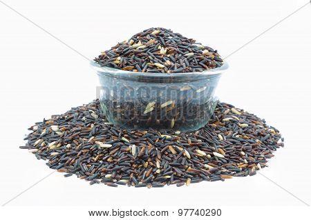 Mixed black rice