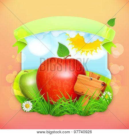 Fresh fruit label apple, vector illustration background for making design of a juice pack, jam jar etc