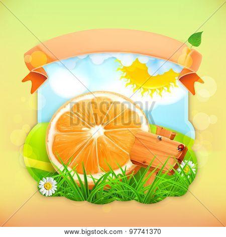Fresh fruit label orange, vector illustration background for making design of a juice pack, jam jar etc