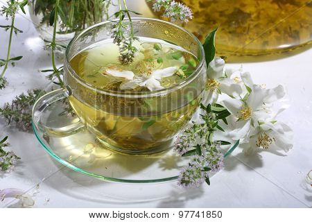 Medical Tea From Grasses And Mint In A Transparent Cup On A White Background