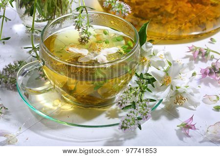 Tea From Grasses And Mint In A Transparent Cup On A White Background