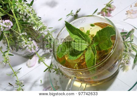 Tea From Gathering Of Medicative Herbs And Mint In A Transparent Cup On A White Background