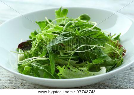 Fresh mixed green salad in bowl close up