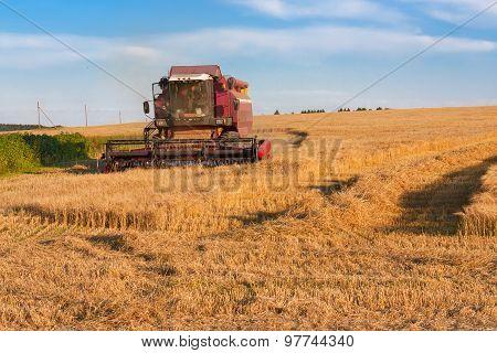 Harvesting barley in August
