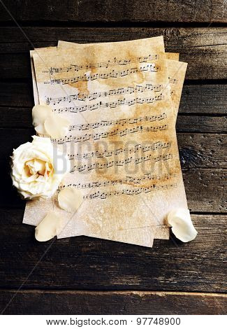 Beautiful rose on music sheets on wooden table