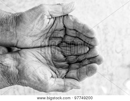 Old Hands Beg