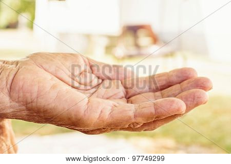 Hand Of The Old Woman