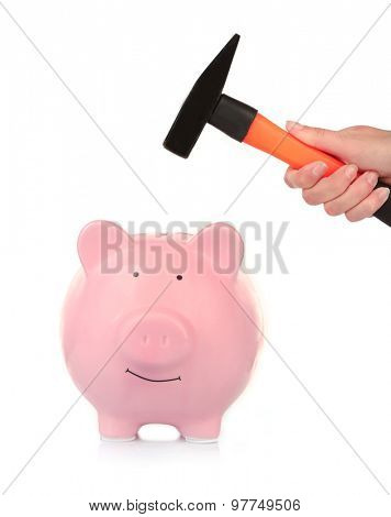 Female hand holding hammer above pink piggy bank isolated on white