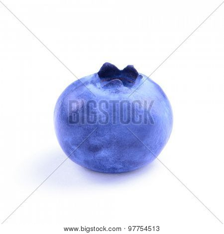Single Fresh Sweet Blueberry Isolated on the White Background