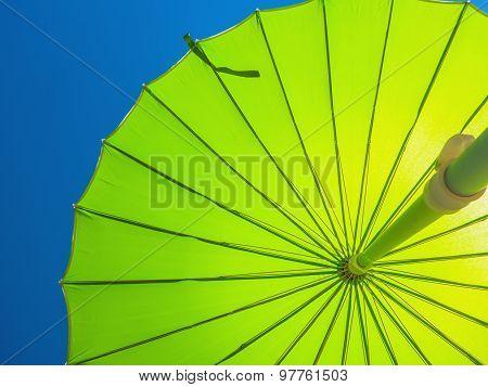 Parasol In Green