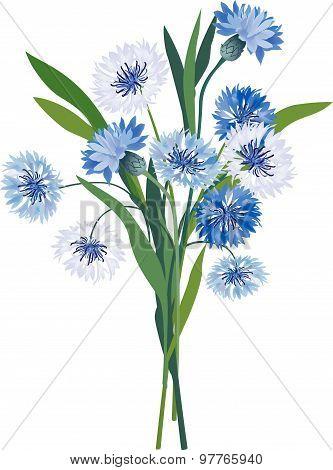 Flower bouquet. Floral frame. Flourish greeting card.