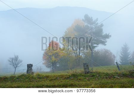 Autumn landscape with fog. Mountain village