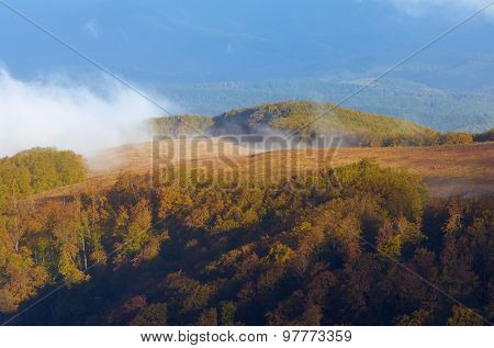 Autumn landscape. Beech forest in the mountains. Beautiful mist over the hill
