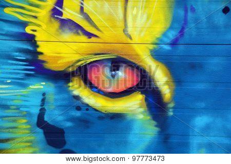 Street art Montreal eye of tiger