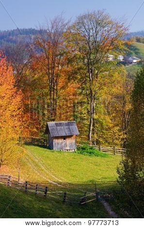 Autumn landscape. Mountain village. Wooden cottage in the meadow. Carpathians, Ukraine, Europe