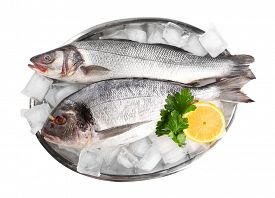 stock photo of fresh water fish  - Fresh fishes with lemon and ice on metal tray isolated on white - JPG