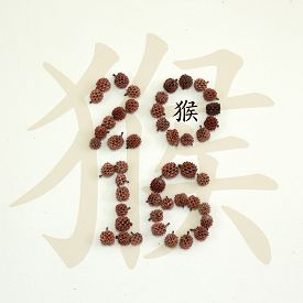 stock photo of hieroglyphic  - New year greeting card with chinese monkey hieroglyph and cones shaping 2016 - JPG