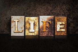 image of pro-life  - The word  - JPG