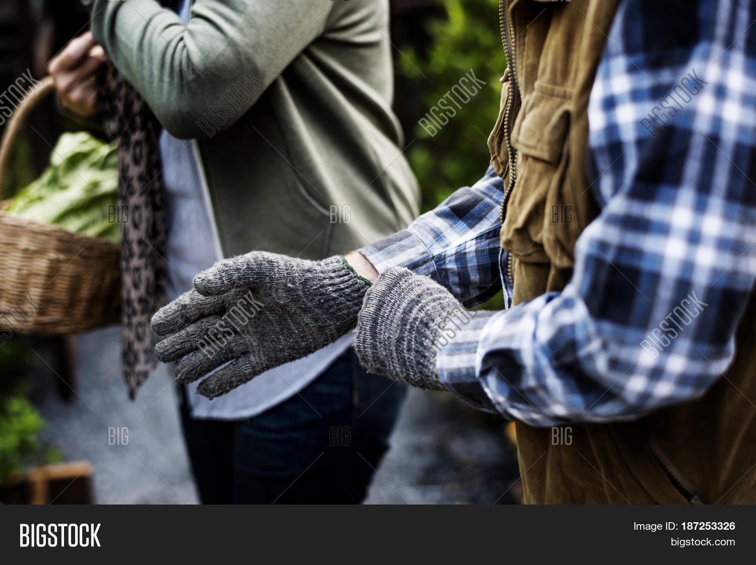 People hands wearing gardening image photo bigstock for Big hands for gardening
