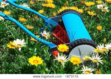 Mowing Flowers