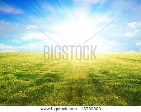 Sunbeam on the nature