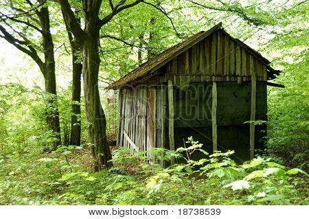 desolated hunters house