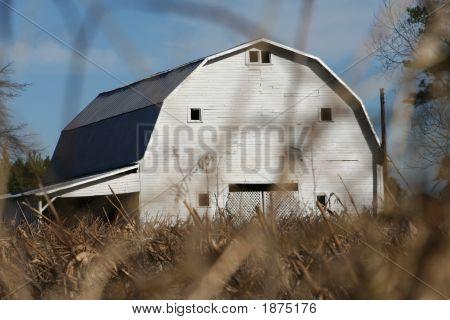 Dairy Barn