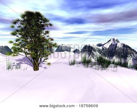 fantasy evergreen tree in winter landscape