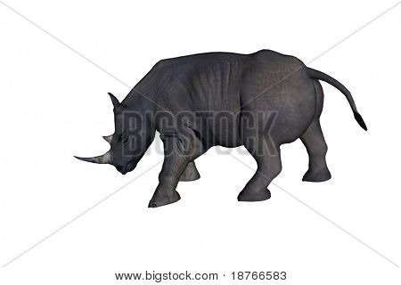 Black Rhinoceros (Diceros bicornis) isolated on white background