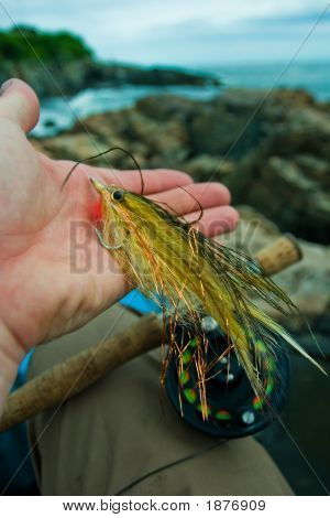 Striped Bass Fly With Rocky Shore Background